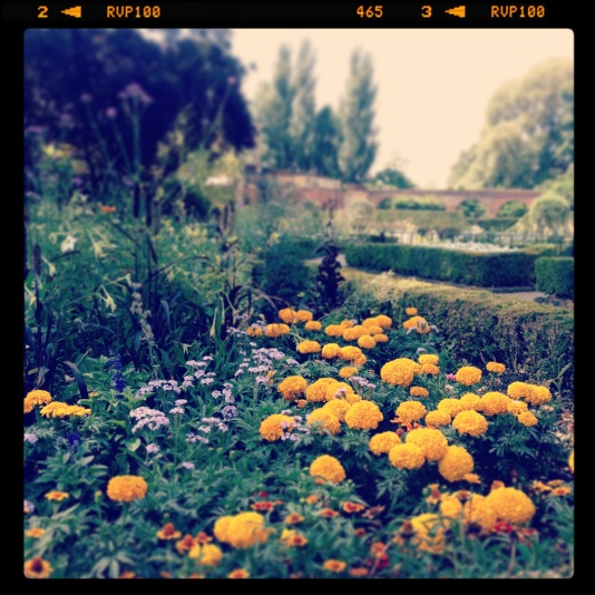 Holland Park Instagram